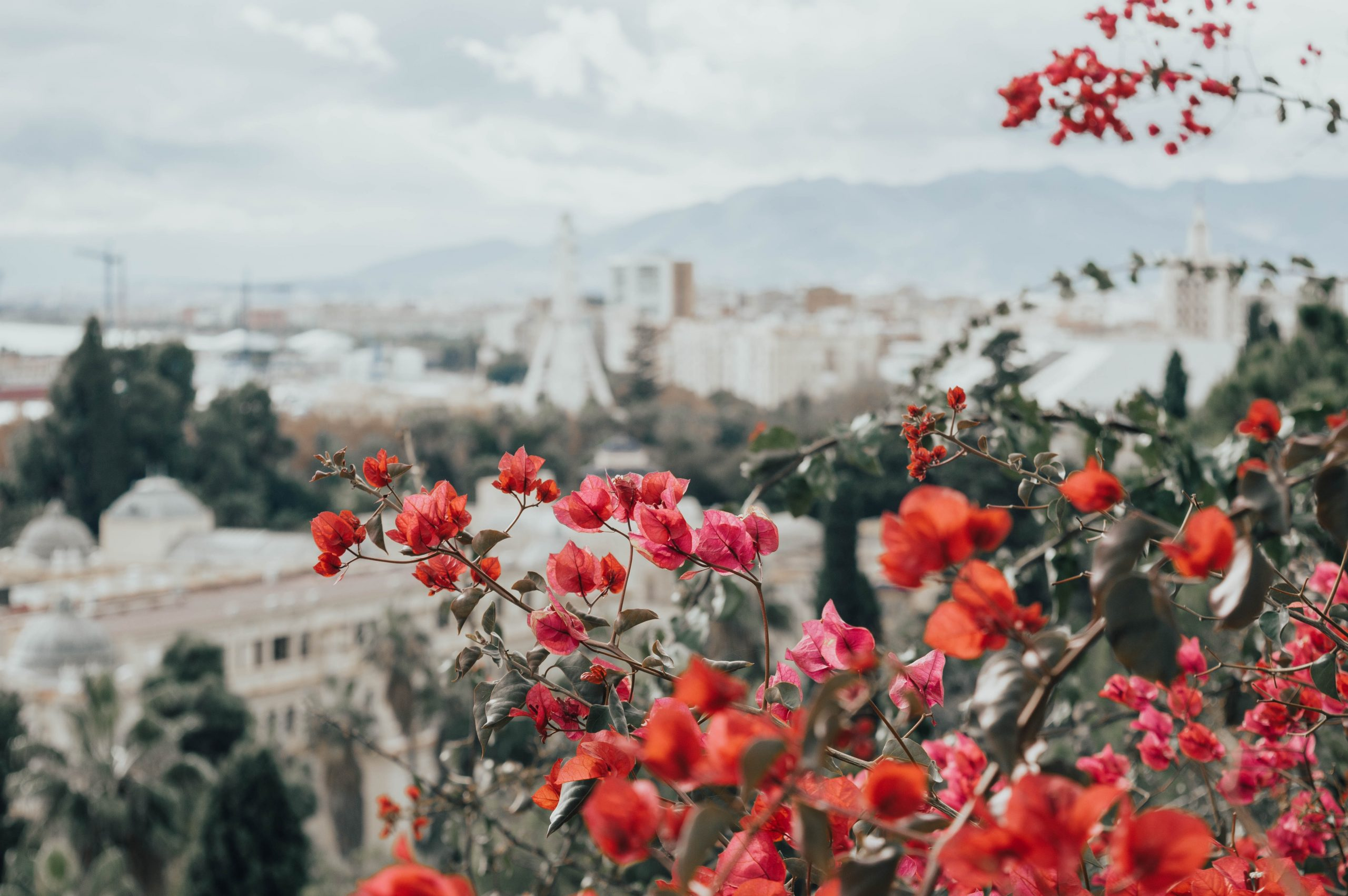 Andalusia views Insiders Travel Journeys